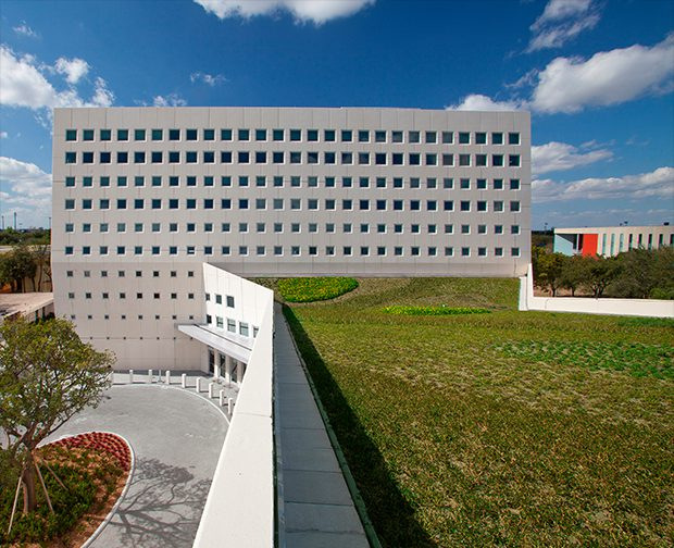 Florida International University School of International ...